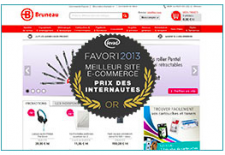 Favori-e-commerce-B2B-2013