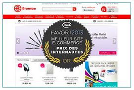 Favori-e-commerce-B2B-2013