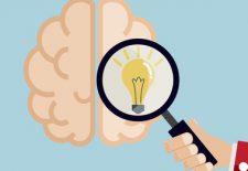Cerveau et différents formats